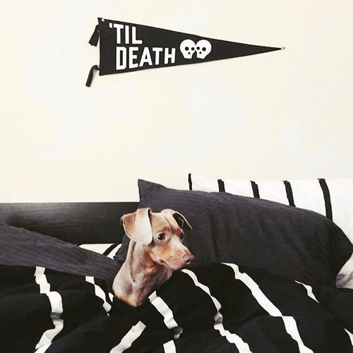 'Til Death Wedding Pennant