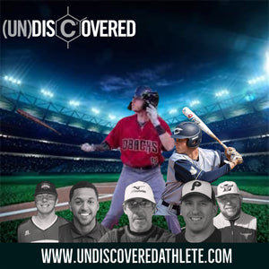 (un)discovered Individual Hitting Lesson