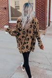 Brown Crew Collar Leopard Print High/Low Hem Long Sleeve Top - XL - Tops - Sunny Angela