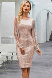 Nude Sequin Tassel Sleeve Bodycon Evening Dress - Dresses - Sunny Angela