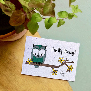 "Bloom your message flowers ""Owl Hip Hip Hooray"""