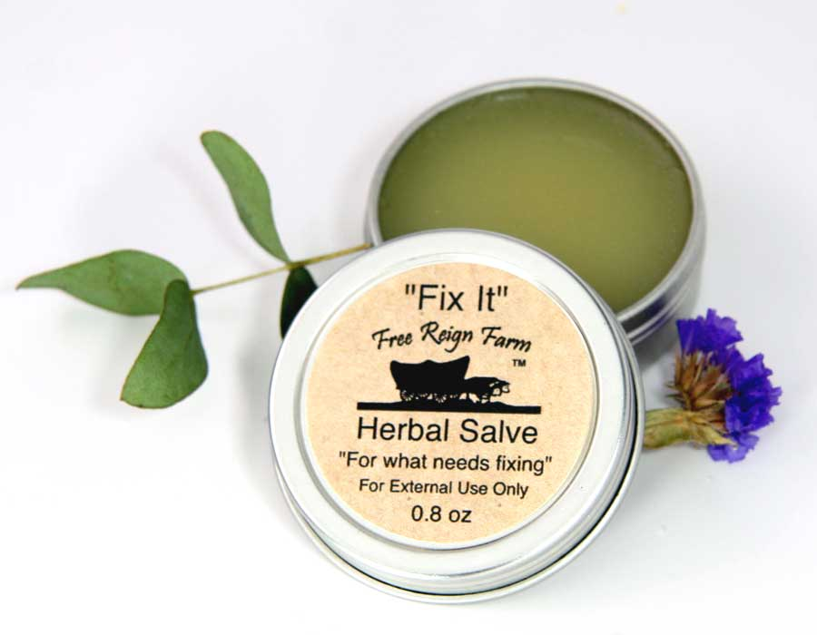 "Fix It Herbal Salve""For what needs fixing..."" - 4 Pack"