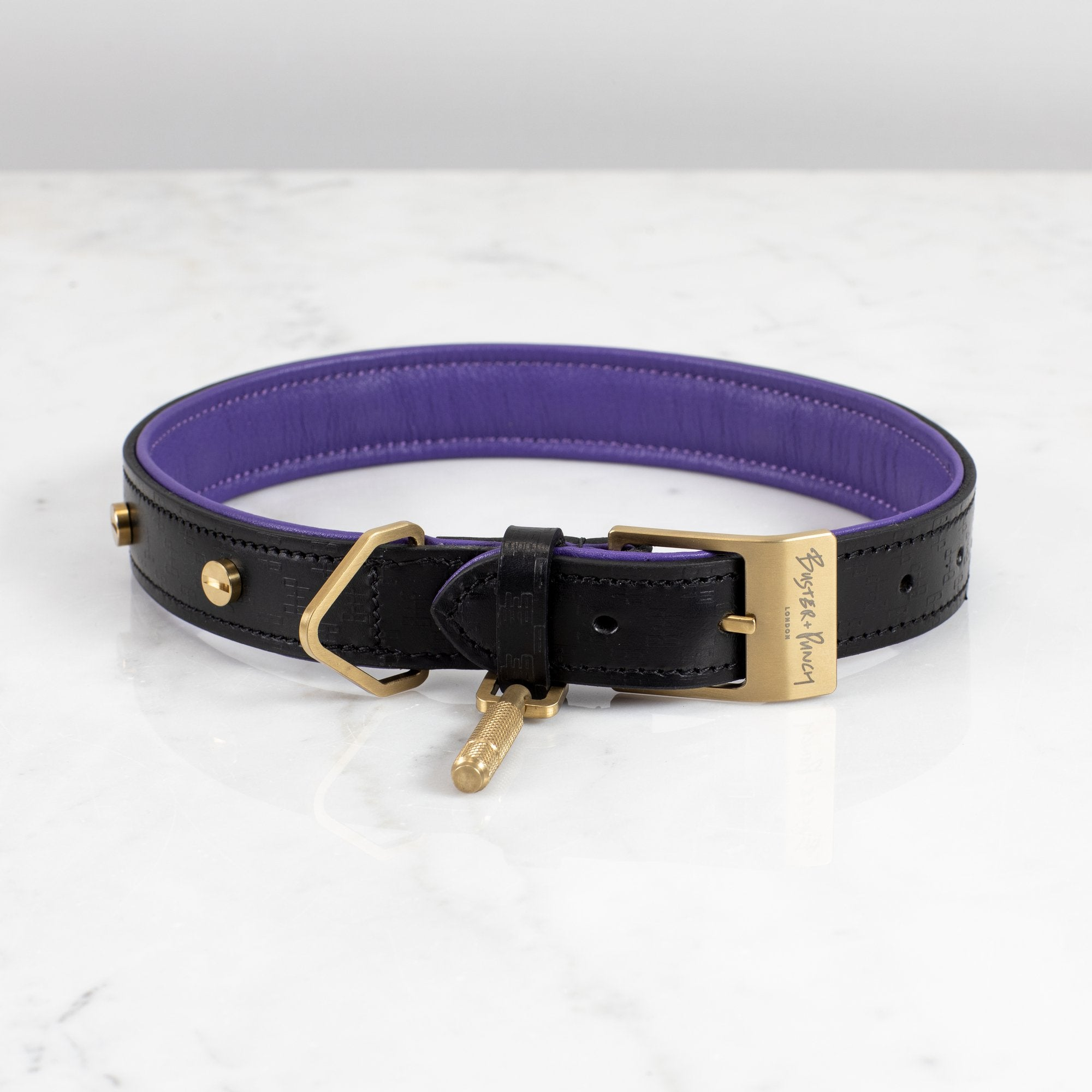 DOG COLLAR / BLACK / PURPLE / BRASS / LARGE - No.42 Interiors