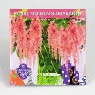 Loral Fountain Amaranth Seeds