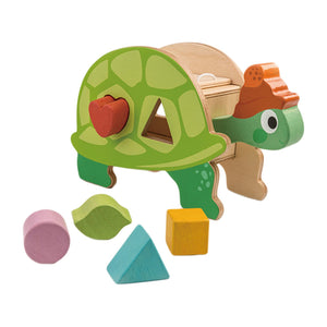 Turtle shape sorter