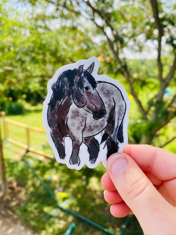 Roany Mustang Sticker