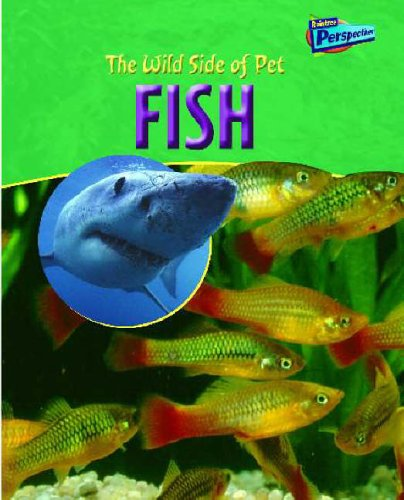 Raintree Perspectives: the Wild Side of Pets: Fish Hardback (Raintree Perspectives) [Hardcover] Robin Birch