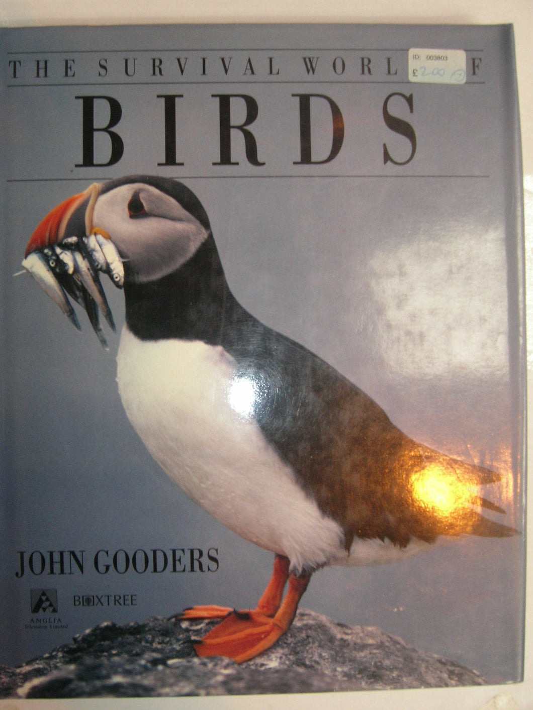 Survival Guide to Birds of the World Gooders, John