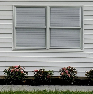 1-way Vision Horizontal Blinds-Buy 2 Free Shipping&10% Off