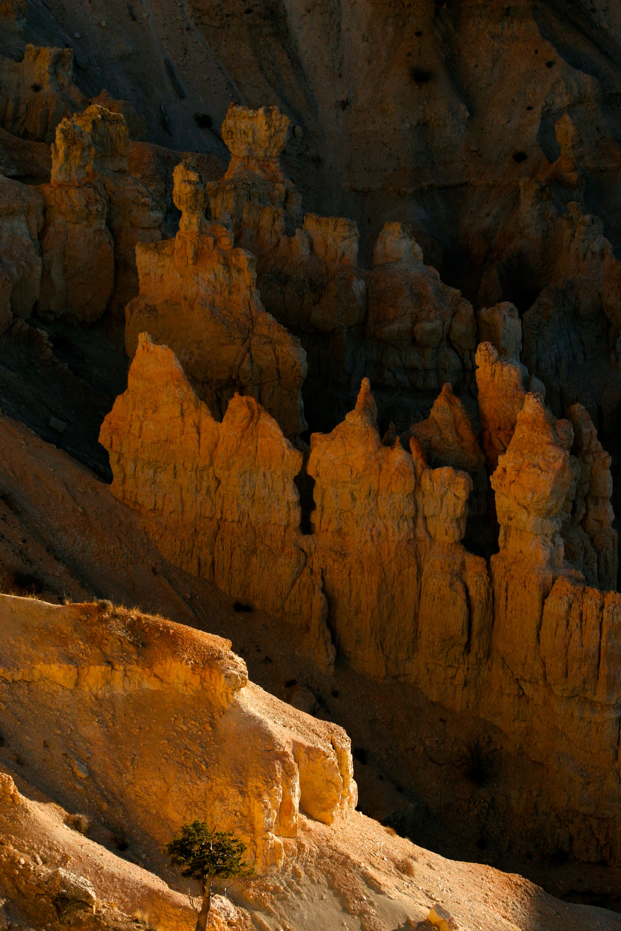 Bryce National Park hoodoos in shades of Red