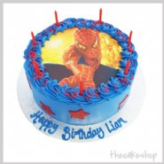 Spiderman Edible Image Cake Combo