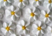 White Drop Flowers 18mm
