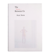 The Space Between Us by Alec Soth
