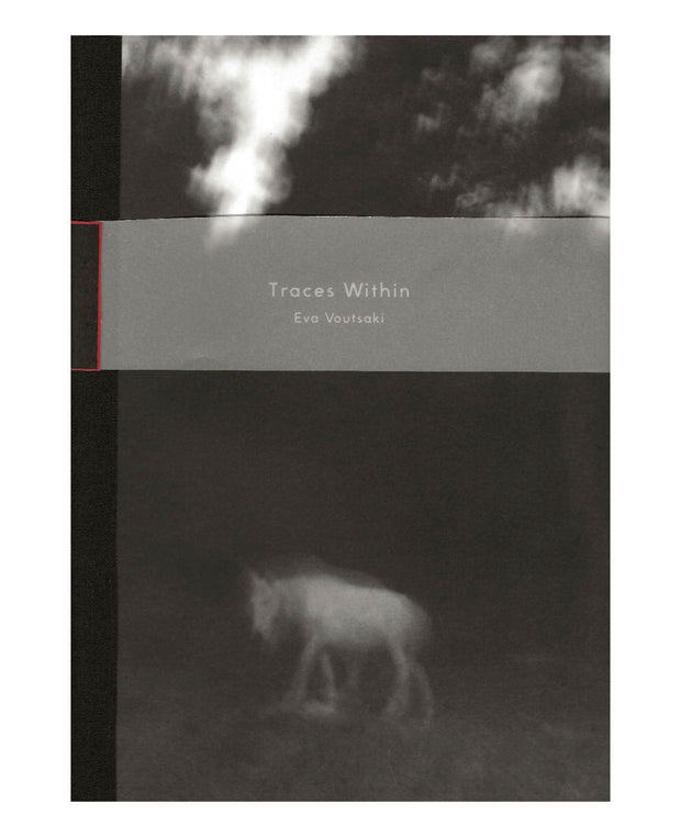 Traces Within (signed)