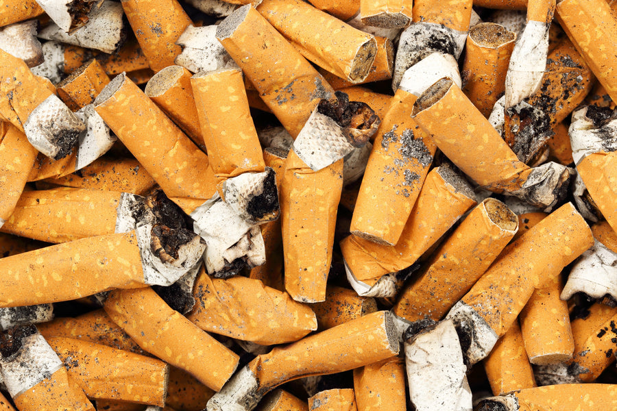 Top Ten Reasons Why Cigarette Butts are so Toxic to the Environment