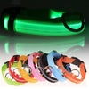 Luminous Pet Collar