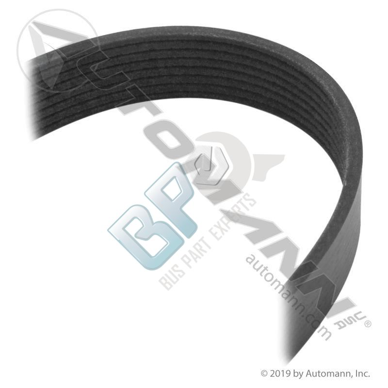 825.5080680 DAYCO GOLD LABEL POLY-V SERPENTINE BELT - buspartexperts.com