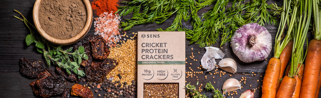 Our First Savoury Cricket Flour Product is Here