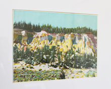 Load image into Gallery viewer, mining cliffs vintage print
