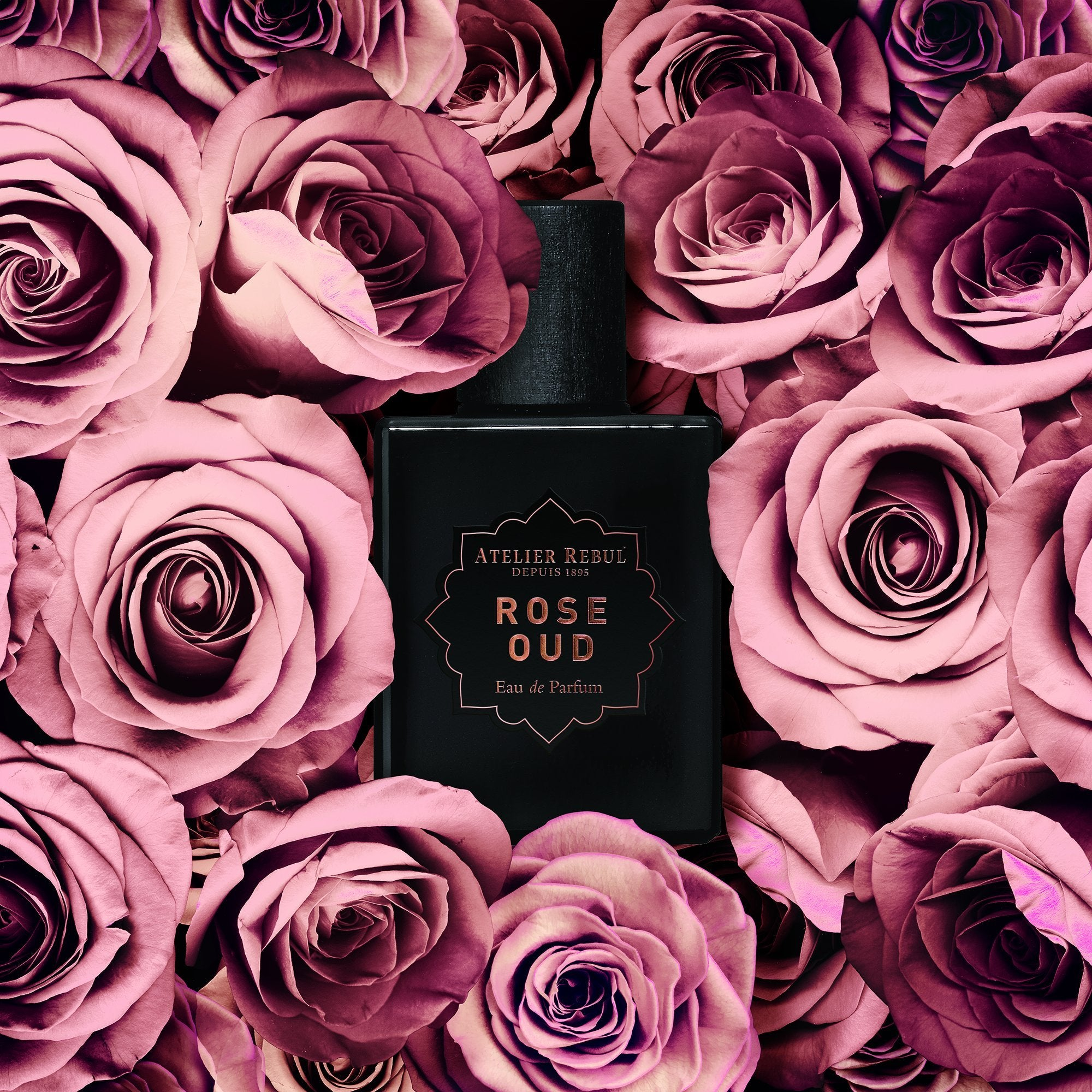 Rose Oud 50ml Eau de Parfum for Women