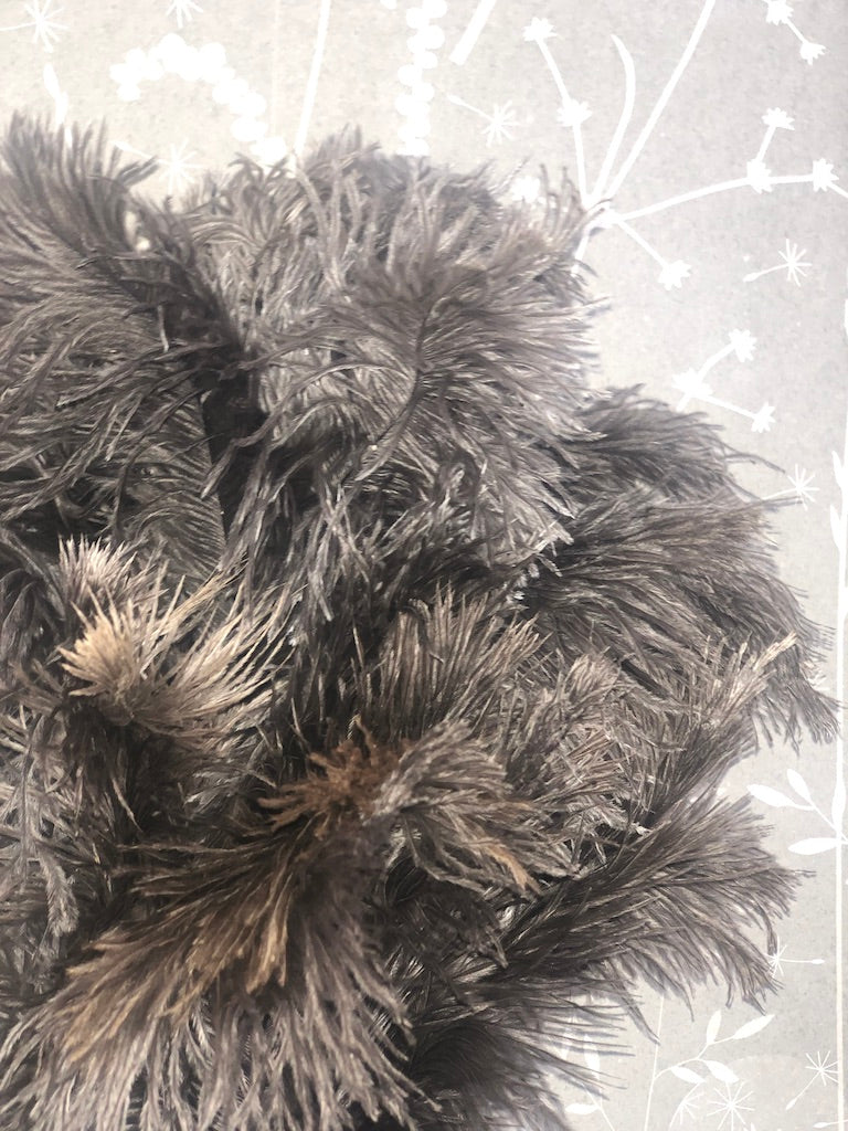 Large Feather Duster with Leather Loop