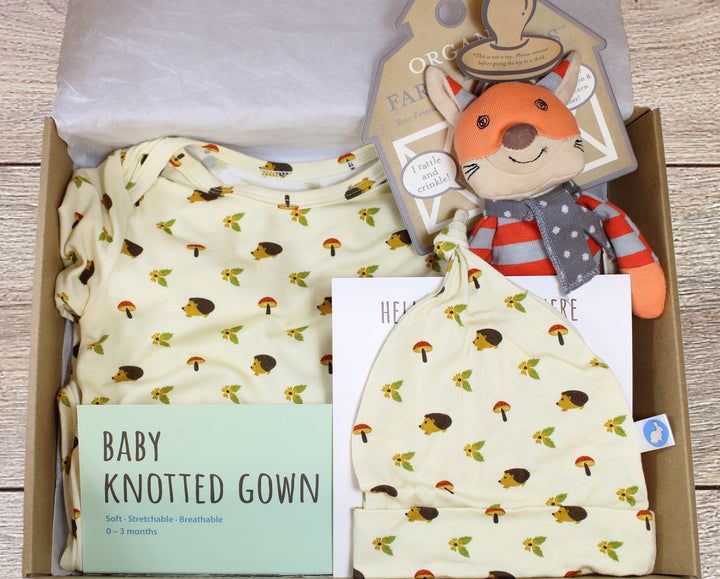 Baby Gift Box - Hedgehog