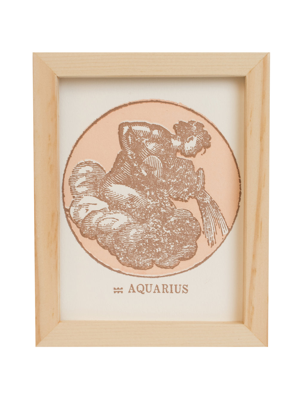 Aquarius (January 20 - February 18)