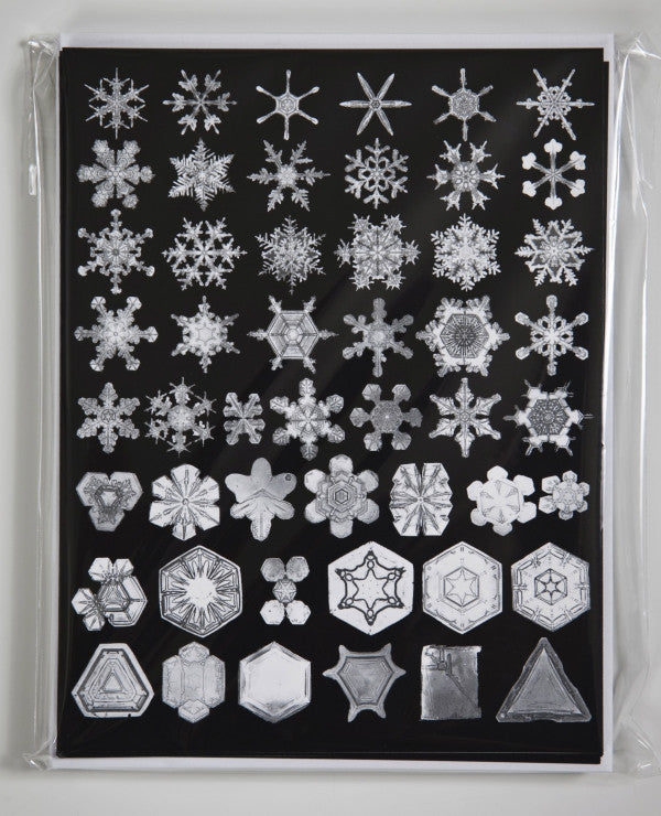 Snow Crystals - Black