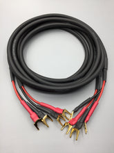 Load image into Gallery viewer, Gotham Audio 50025 Speaker Cable Pair Spade