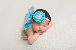 Turquoise and Silver Butterfly Wing Set