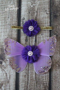 Lavender and Purple Butterfly Wing Set