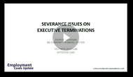 Severance Issues in Executive Terminations