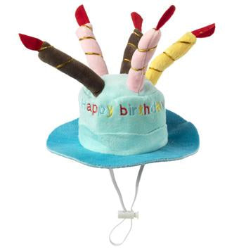 House of Paws - Blue Birthday Hat