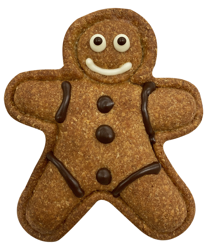 Doggy Gingerbread Man Biscuit