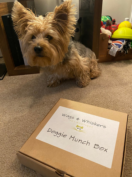 Doggie Munch Box