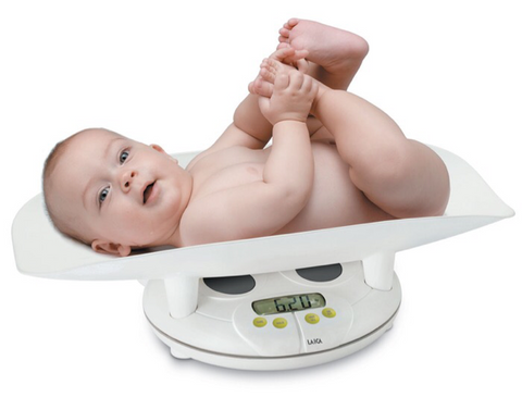 Laica Digital Scale BF2051