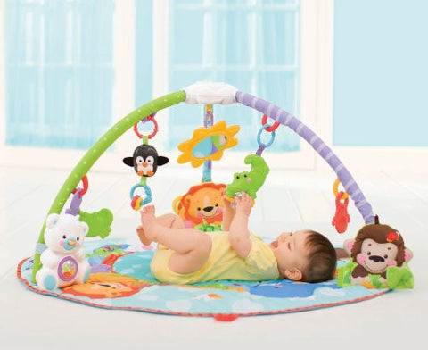 Fisher Price Precious Planet Deluxe Activity Gym