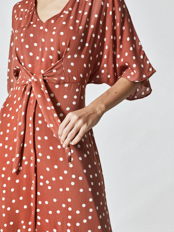 Cocoa Polka Front Tie Dress
