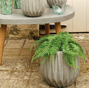 Faux Boston Fern Plant