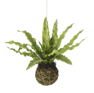 Faux Hanging Asplenium Ball