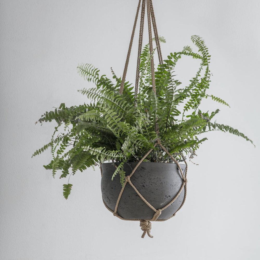 Cement Hanging Pot - Carbon