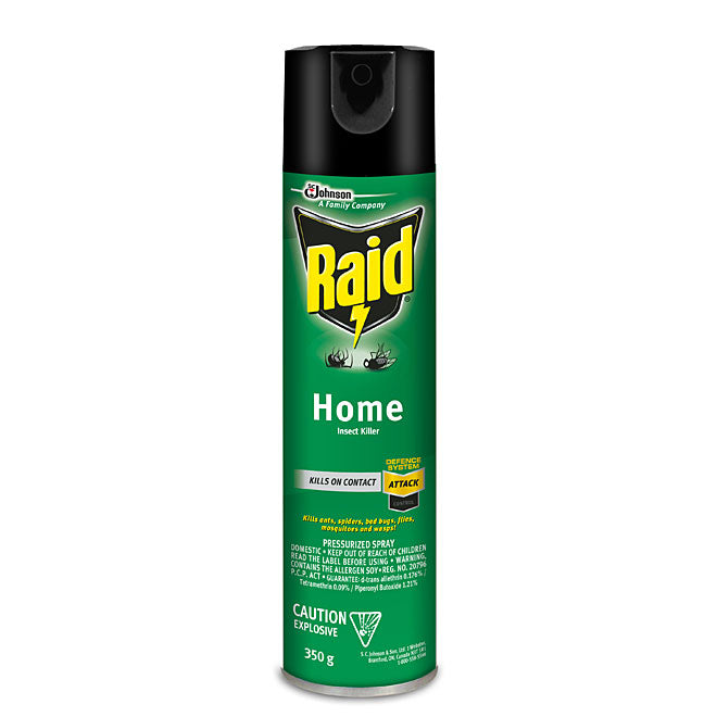 Raid Home Insect Killer 350g
