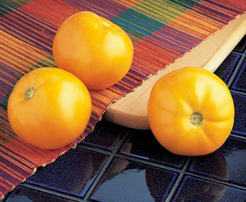 Carolina Gold Hybrid (Low Acid Tomato)