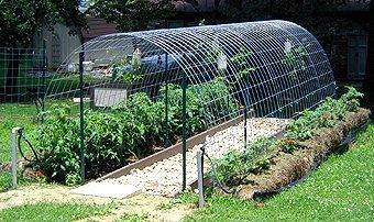Hog Fence Panel - 4GA Galvanized - 11 Line - 34'' X 16'