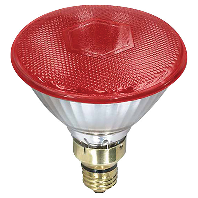 Canarm - 100W Infrared PAR38 Brooder Bulb - Red