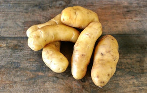 Seed Potato - La Ratte Fingerling - Sold by the Pound
