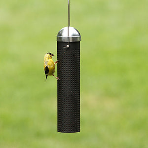 Perky Pet Finch Feeder
