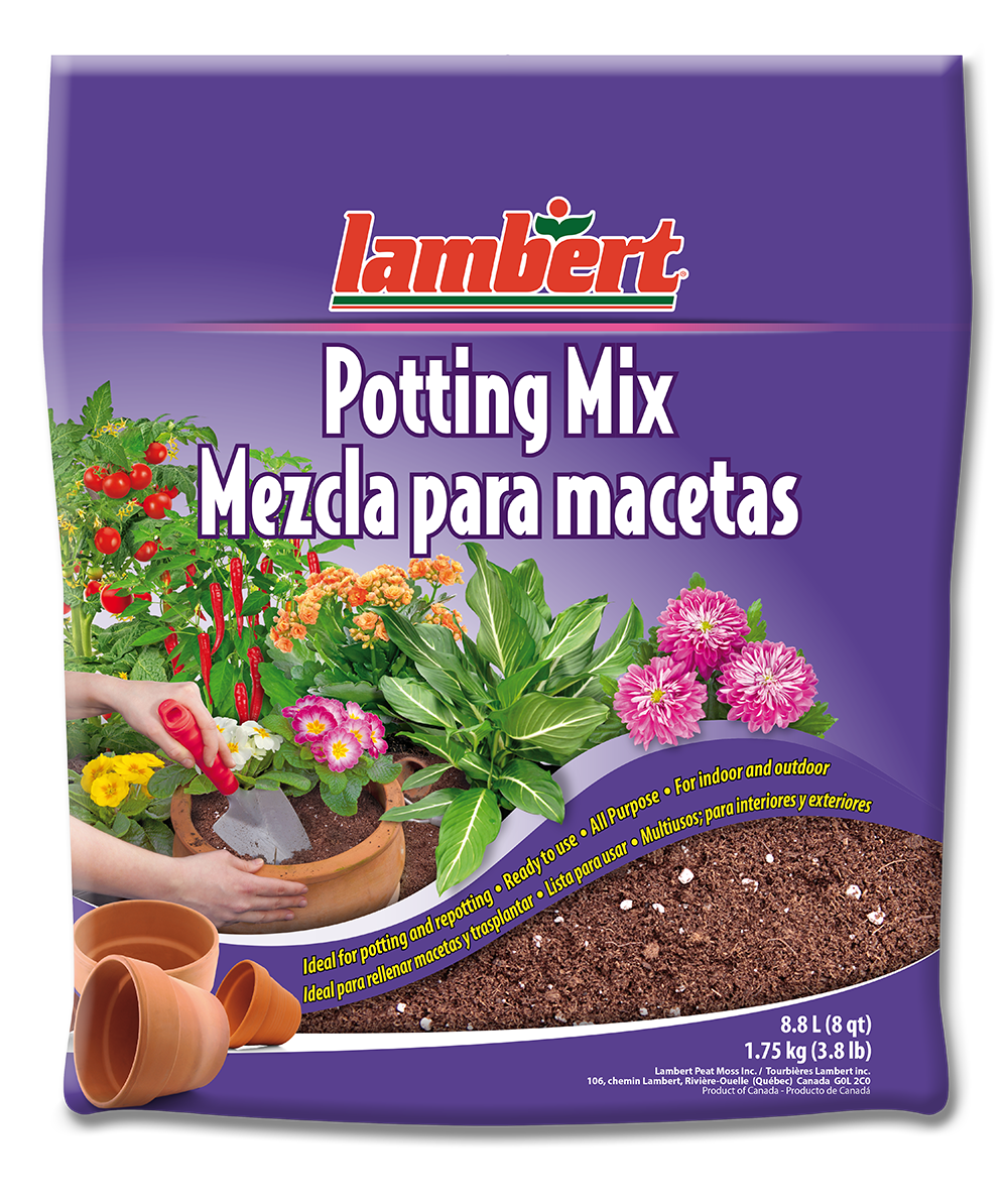 Lambert All Purpose Potting Mix 8.8 L (8 dry quarts)