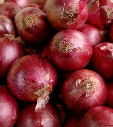 Red Onion Sets - Sold by the Pound
