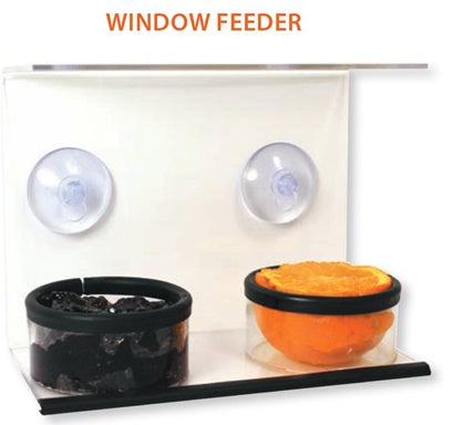 Oriole Window Feeder